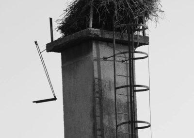 andrea-muenger-2011-015