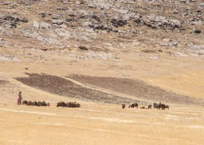 andrea-muenger-iran-05