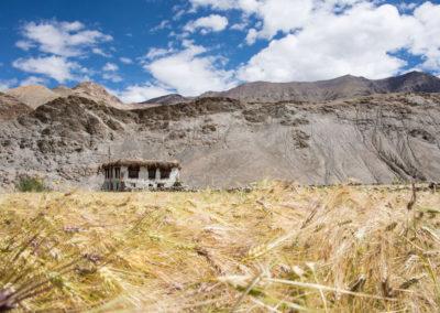 andrea-muenger-ladakh-18