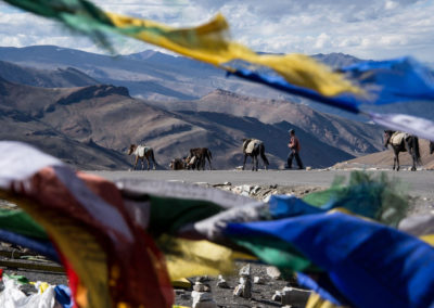 andrea-muenger-ladakh-20