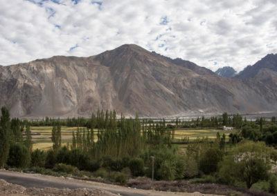 andrea-muenger-ladakh-24