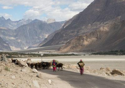 andrea-muenger-ladakh-25