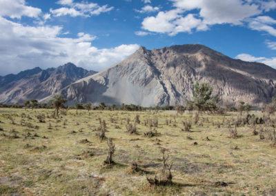 andrea-muenger-ladakh-30