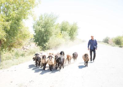 andrea-muenger-uzbekistan-18